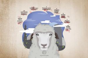 Domba Paskah Dan Isolasi 14 Hari Lawan Covid 19?
